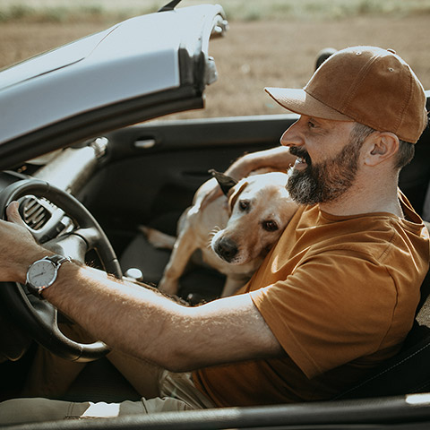 Man driving a convertable on the open road while his dog rests its head on his lap